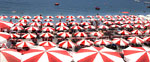 Red umbrellas 2