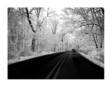 Snow Canopy Road
